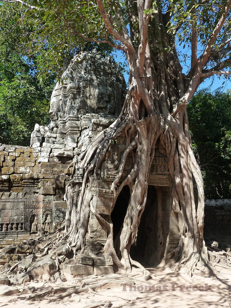 007.  Temples of Angkor_2010